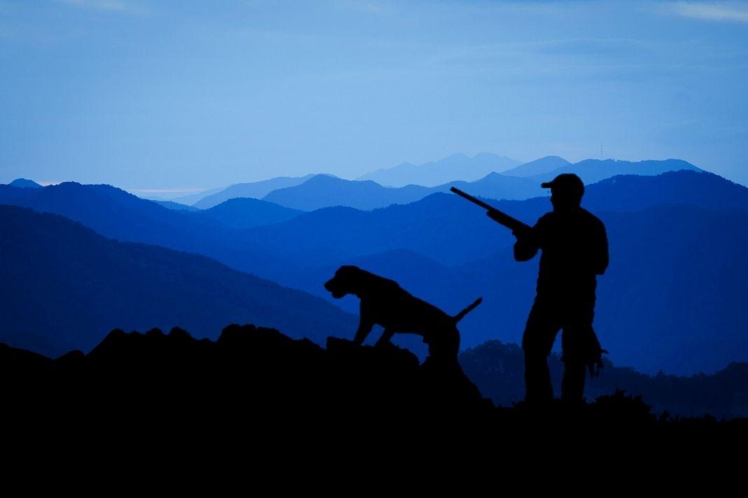 Săn hay bị săn